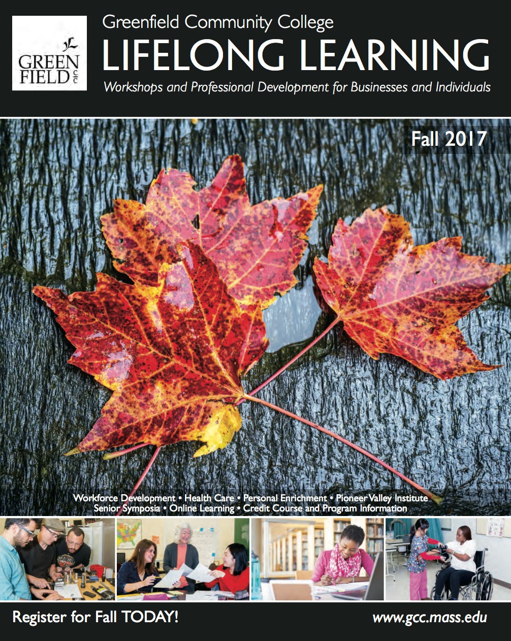 GCC Lifelong Learning Guide