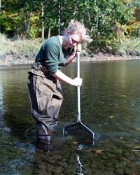 Environmental Studies lab/fieldwork