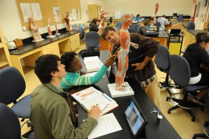 Human Anatomy and Physiology Class